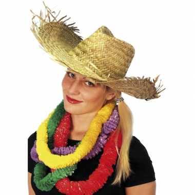 Hawaii of strandhoed
