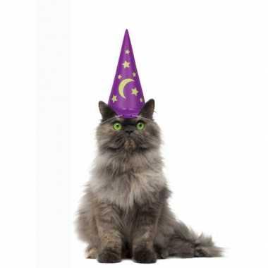 Opblaasbare tovenaarshoed katten