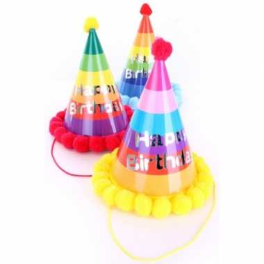 X stuks verjaardag feesthoedjes volwassenen xl karton